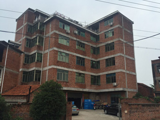 factory building of turtle light supplier