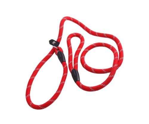 fashion cheap pet leash01