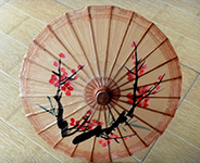 Chinese Paper Umbrella