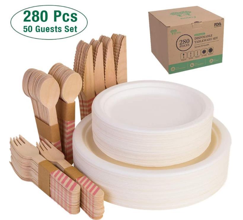 Compostable Paper Plates Set