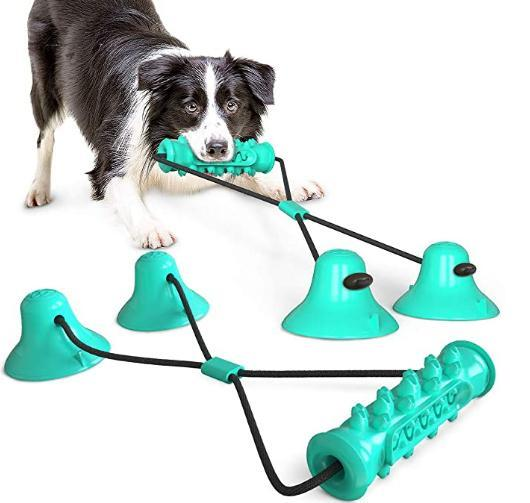 Double Suction Toy