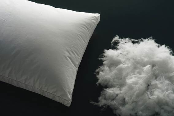 Down Pillow Stuffing