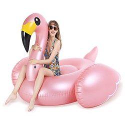 Floating-flamingo[1]